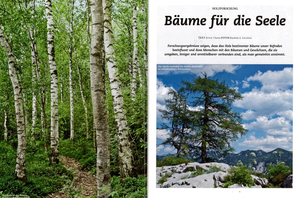 Tagebuch der Bäume