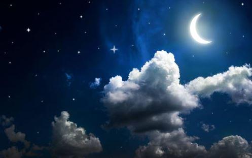 ZeitenSchrift – das Geheimnis des Mondholzes