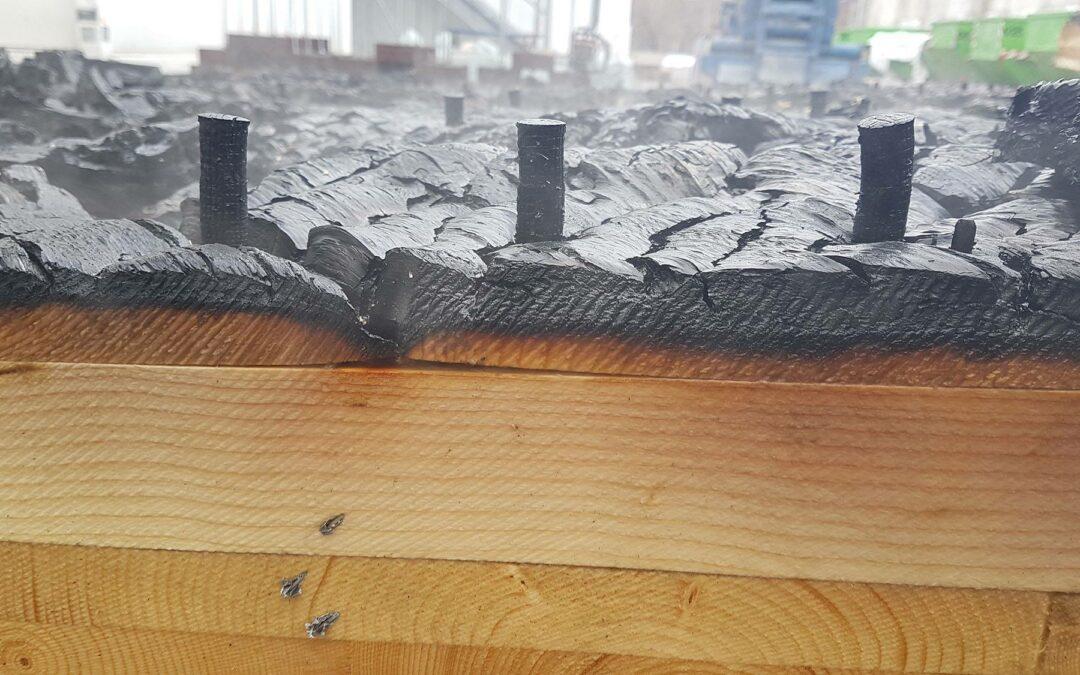 Holz100 und Brandschutz